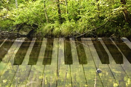 photo double exposure of piano keys and forest landscape with a lake