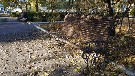 art horizontal photo of a close-up of autumn leaves on a bench on a path in a public garden Stock fotó