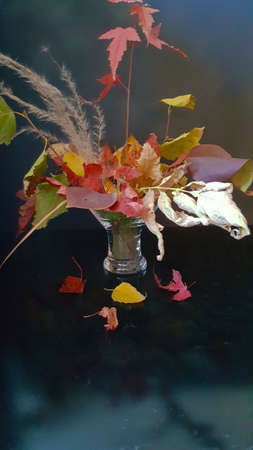 autumn bouquet of different leaves on a dark background with rays of light Stock fotó