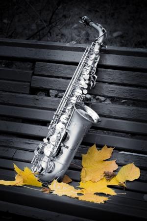 saxophone: autumn saxophone