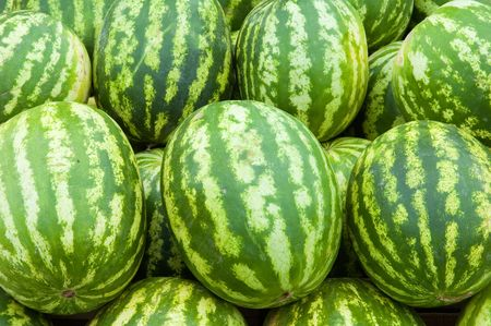 agronomics: Background from set of tasty ripe striped water-melons.
