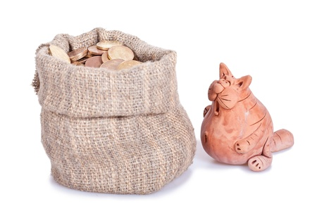 The surprised  cat costs near to a bag of money. Unexpected riches Stock Photo - 12301912