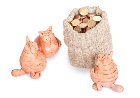 Three cats stand near to a bag of money  Section of the inheritance Stock Photo - 12748644