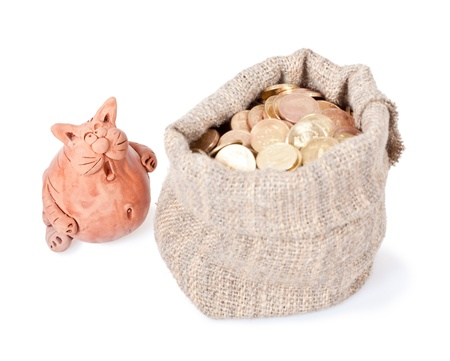 unexpected: The surprised  cat costs near to a bag of money  Unexpected riches Stock Photo