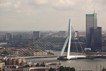 humanist: Erasmus bridge  Rotterdam  Holland