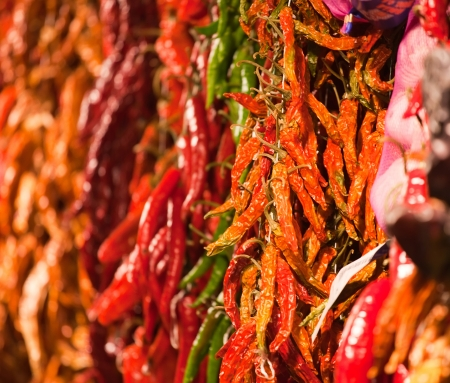 Dried and fresh cayenne pepper in bunches hanging above market counter photo