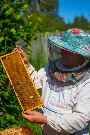 praiseworthy: A beekeeper checks on his bees while being dressed in protective bee apparel on a farm
