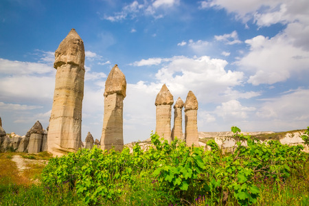 Cappadocia, rocks of an unusual form in the Valley of Love in summer day