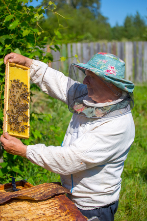 A beekeeper checks on his bees while being dressed in protective bee apparel on a farm