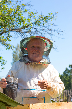 Beekeeper holding a frame of honeycomb. Working bee on honeycomb. Beekeeper checking a beehive.