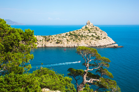 relic juniper on the rock against the cape Capchik. Crimea 写真素材