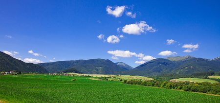 Rural landscape with a green field and the beautiful blue sky Stock Photo