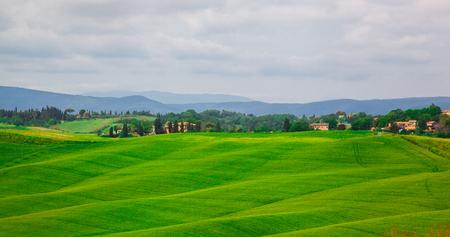 beautiful summer landscape with wavy hills. Tuscany Italy