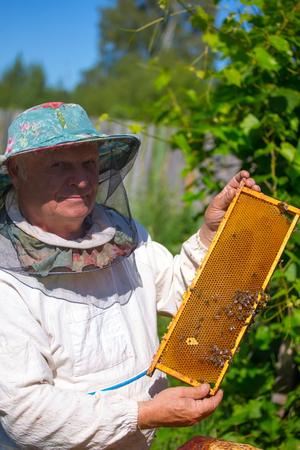 Beekeeper working in his apiary male beekeeper controlling beehive and comb frame Stock Photo