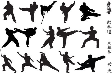 kung fu: Different karate fighters and symbols on white background Stock Photo