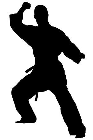 kung: Black silhouette of karate man prepared for fight Stock Photo