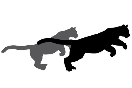 Black wild cat silhouettes on white background