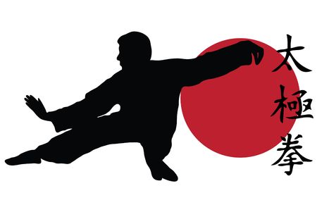 kung fu: Black silhouette of karate man prepared for fight Stock Photo