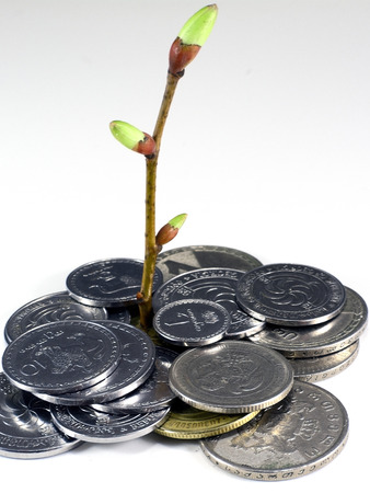 accumulation: growth of accumulation lari