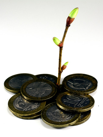 accumulation: symbolical image of growth of private accumulation Stock Photo