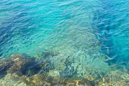 turquoise water: clear turquoise water and rocky sea shore