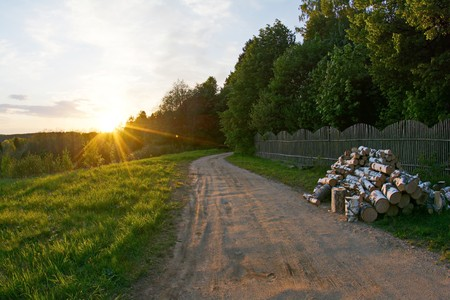 rural soil road passing through green forest Stock Photo