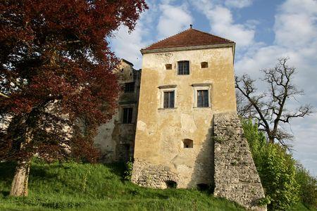 bilding: Castle at the village Svirzh (Ukraine) Stock Photo