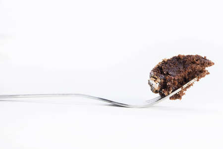 flourless chocolate cake: Bite of flourless chocolate cake