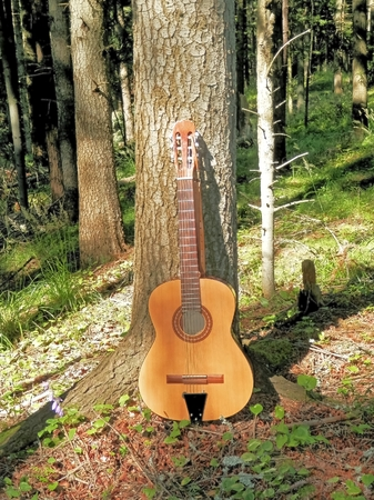 Photo of a musical instrument that contributes to the romantic moments in nature with tree as a symbol of friendship in the mountains Stock Photo