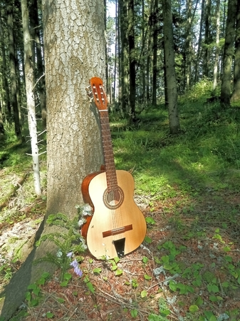 contributes: Photo of a musical instrument that contributes to the romantic moments in nature with tree as a symbol of friendship in the mountains Stock Photo