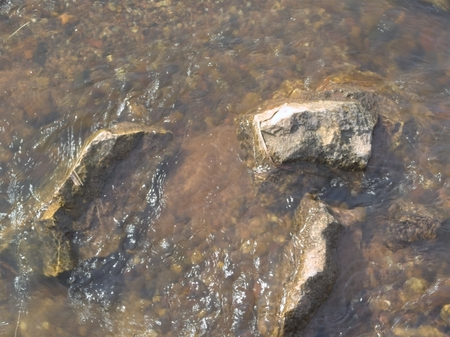 turbid: The bottom of the ford of the river where the stones after rain above the water level.