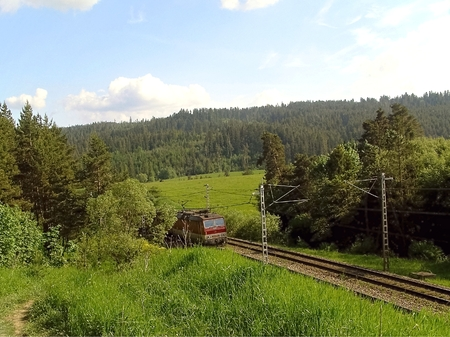 force of the nature: Summer is in full force of nature and landscape with the rail looking at the time for rest tourism.