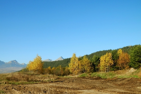 colouration: Autumn hiking nature in the background mountains High Tatras.
