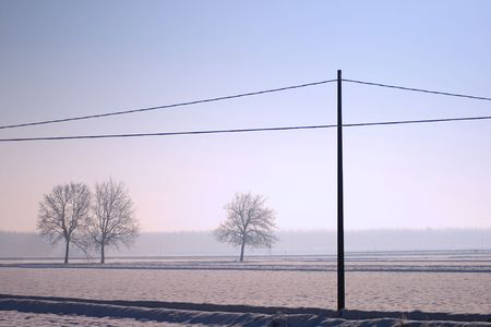 Landscape of snow, trees and a light pole photo