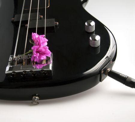 Closeup of a part of a bass guitar with a flower in between the strings photo