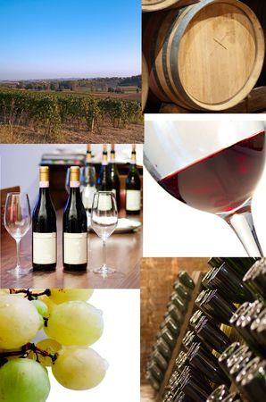 Different images of life of wine, from vineyard to bottle Stock Photo