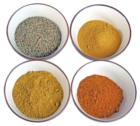 appetize: Four spices typical of indian cuisine: cumin, curry, chili and curcuma Stock Photo