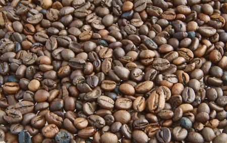 percolate: Background completely full of coffee beans of different colors Stock Photo