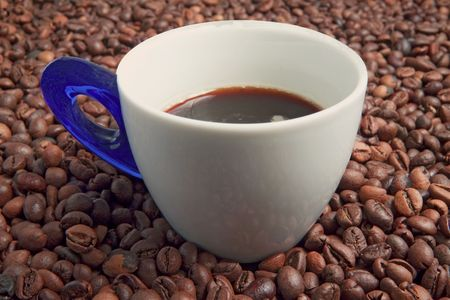 percolate: A cup full of coffee surrounded by coffee beans