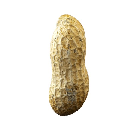 A single isolated peanut over white background
