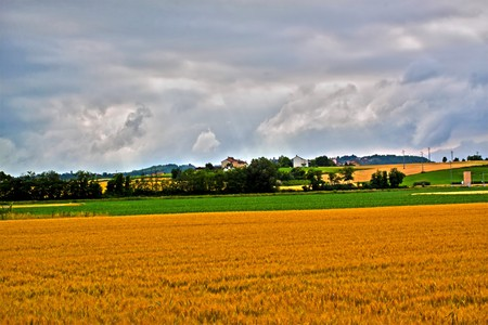 HDR landscape with a field of golden wheat and country in the background photo