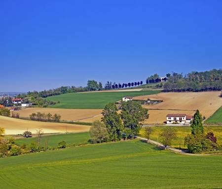 Landscape of hill with fields, trees, houses Stock Photo - 9444916