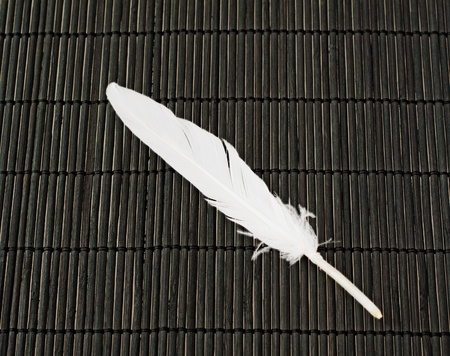White feather over a black wooden mat photo