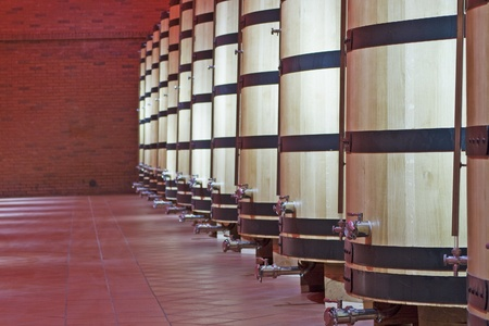 Great barrels for liquor in the cellar of a distillery photo
