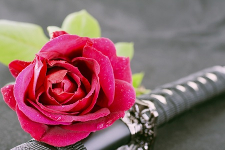 Red rose laying on a katana, black background