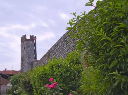 Wall and tower of a castle with plants and flowers Stock Photo - 13825094