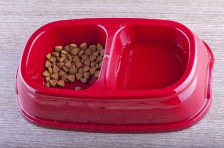 catfood: Primo piano di tazza rossa con due spot per catfood e acqua Archivio Fotografico