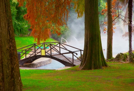 Little bridge over a little lake in between trees  photo