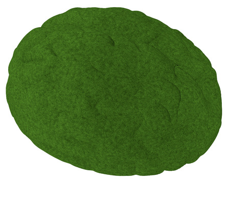 Green brain isolated over white, 3d render photo