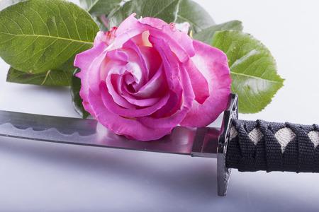 Pink rose over the sword of a katana